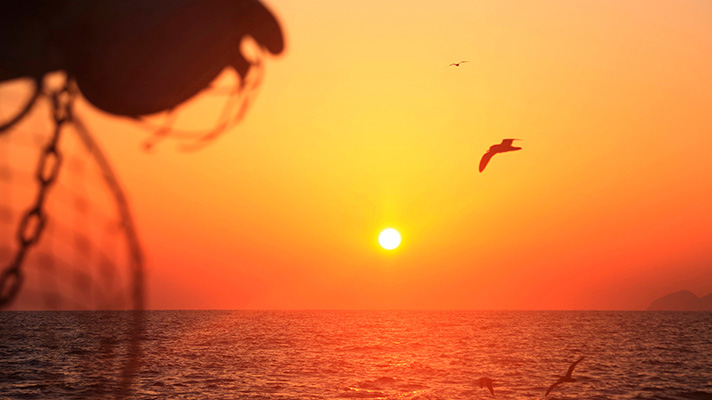 Sunset over the ocean with silhouette of gull and fishing gear in foreground