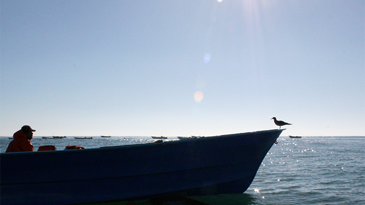 Man in silhouette sitting in small boat on still sea with sunshine