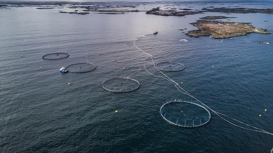 Aerial view of an aquaculture farm