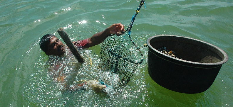 A person swimming in the ocean with a net and a bucket.