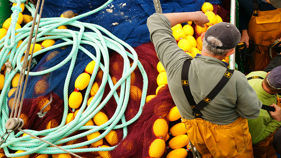 Fisher with ropes and net
