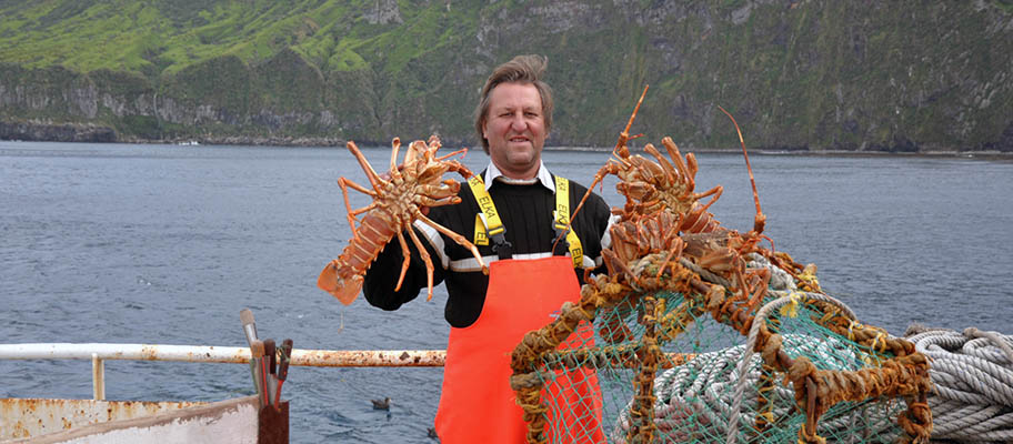 Man in orange overalls holding up large rock lobsters with island behind