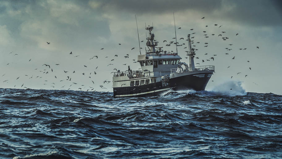 Large fishing boat on rough water surrounded by sea birds