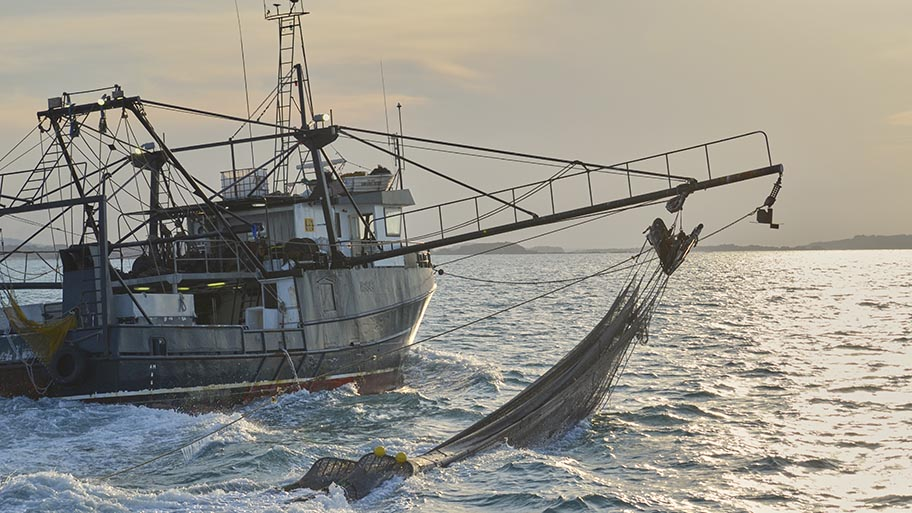 Boat with large net suspended on calm sea
