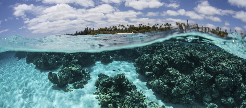 A view under clear blue water of the reefs below.