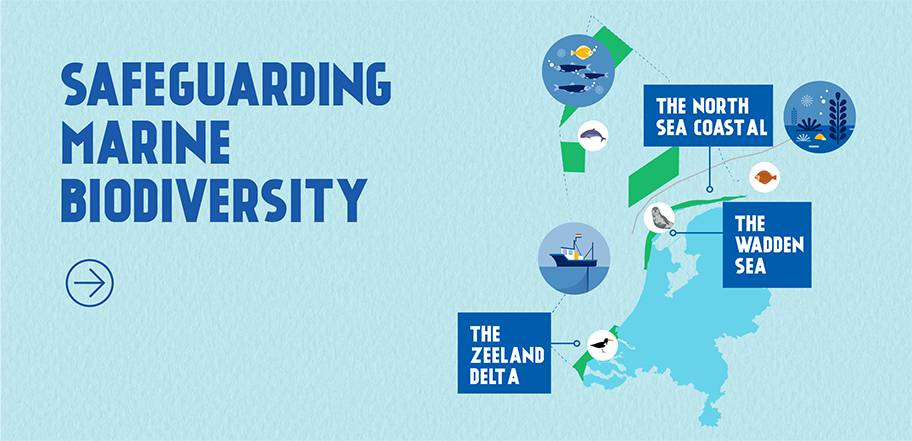 Protected areas found within the fishing grounds of Dutch MSC certified fisheries.