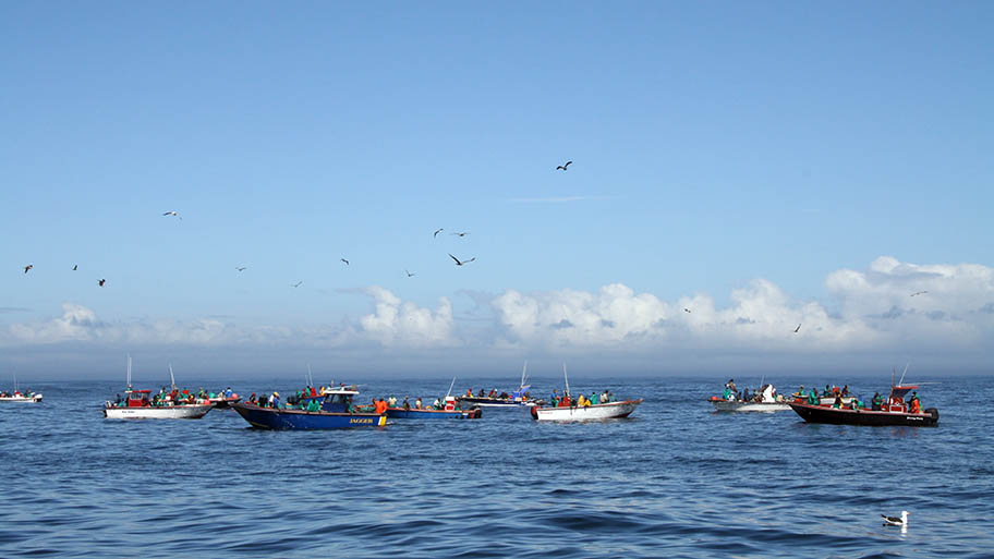 Small colourful boats on calm sea with large birds circling in blue sky