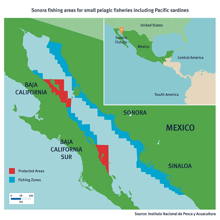 Map showing fishing areas for small pelagic fish between Sonora and Baja California in Mexico