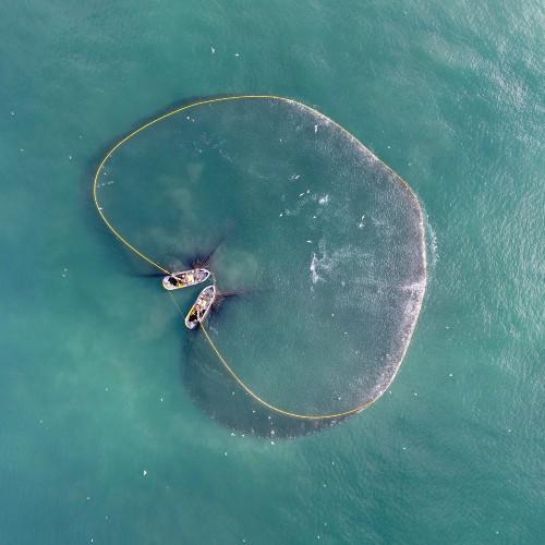 Atlantic menhaden purse seine nets