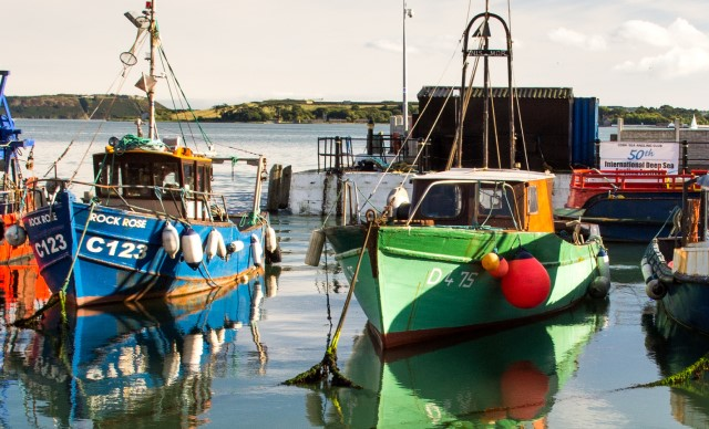 Colourful boats moored in harbour