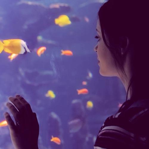 Teenage girl looking at fish in aquarium