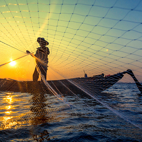 Fisher standing in a boat throwing a net with the sun shining in the background