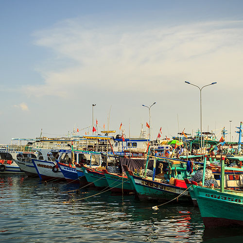 Fishing boats docked in harbour