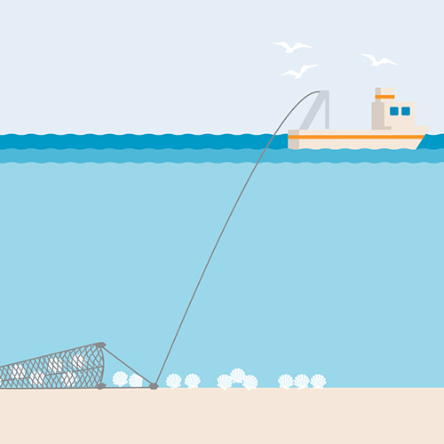 Dredge fishing gear illustration