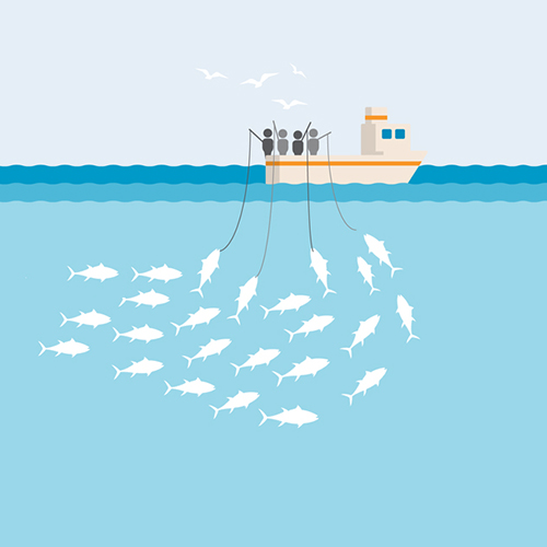 Pole and line fishing gear illustration