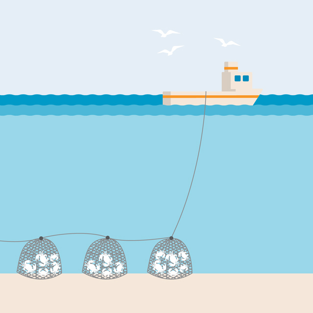 Pots and traps fishing gear illustration
