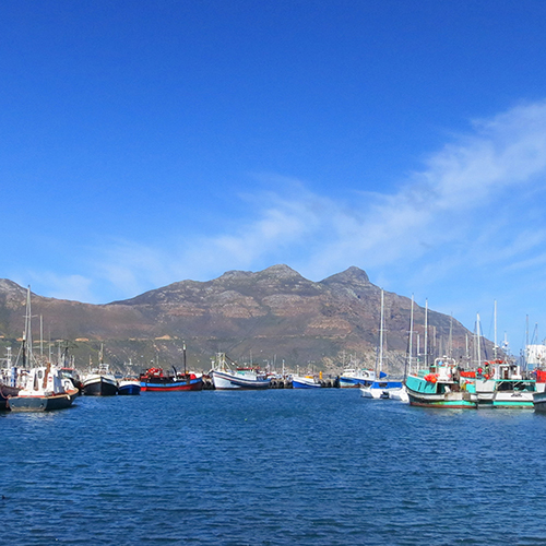 Fishing boats in a harbour with mountains and blue sky behind them.