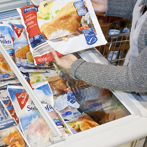 Person's hands holding MSC certified frozen fish product over seafood filled freezer