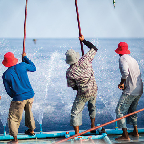 Maldivian pole and line tuna fishermen on boat