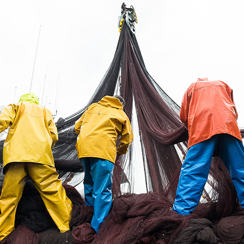 Full shot of fishermen repairing hanging nets with their backs to the camera