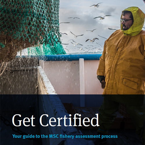 MSC Get Certified Guide PDF cover image