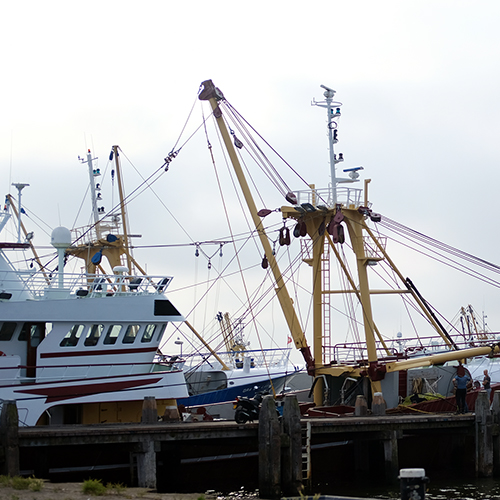 CVO pulse sole and plaice vessel in harbour, Netherlands