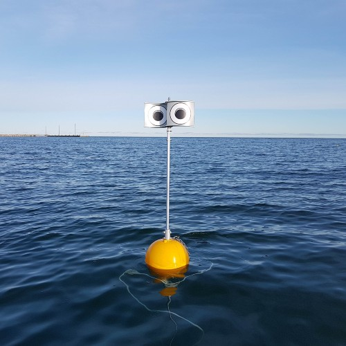 A bobbing buoy with big eyes on it used to deter birds