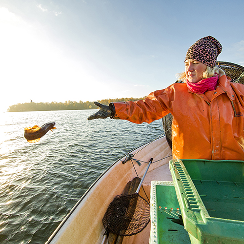 Fisherwoman Anna on a boat overlooking Lake Hjälmaren