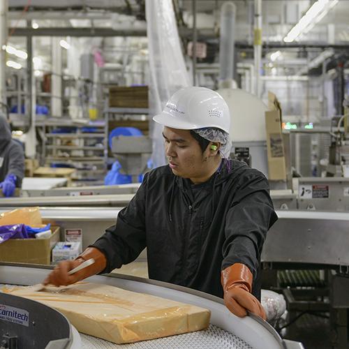 Man working at Unisea fish processing facility, Dutch Harbor, Alaska