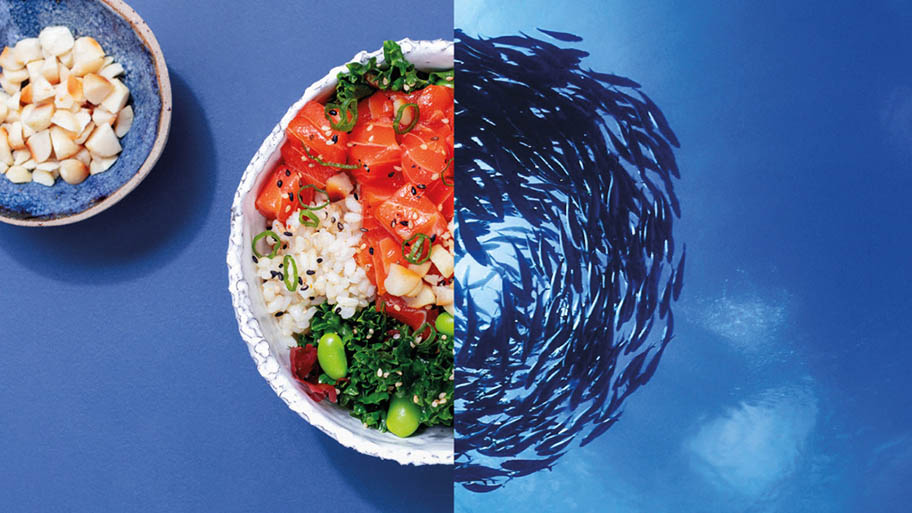 Split screen image of salmon and rice in bowl and swirling school of fish underwater