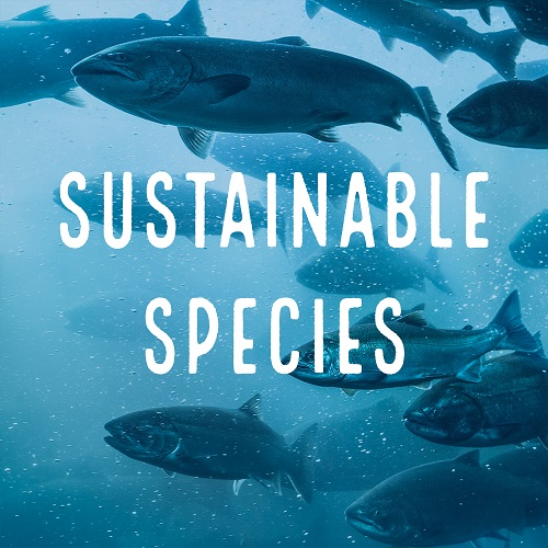 sustainable species