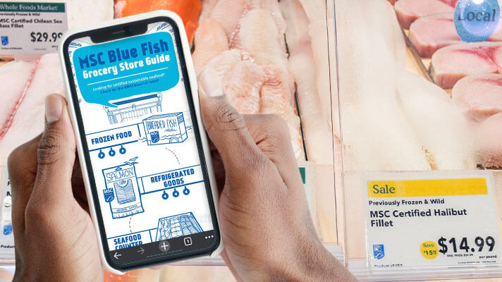 person holding up cell phone with MSC blue fish guide on screen in front of fish counter