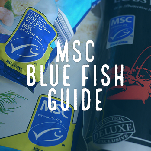Healthy Oceans Spotlight 1 - MSC Blue Fish Guide