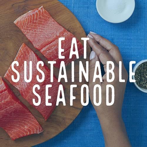Healthy Oceans Spotlight 1 - Eat Sustainable Seafood