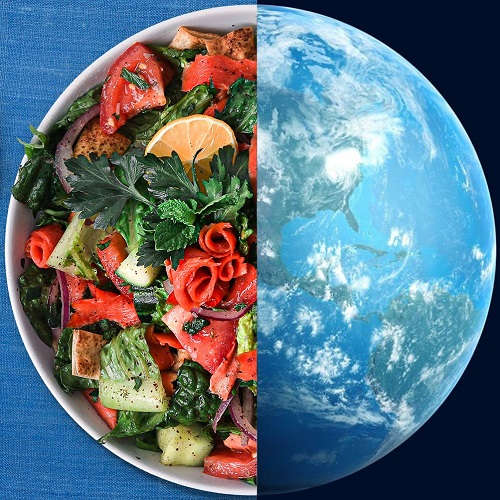 Split screen image of a salmon salad and Planet Earth