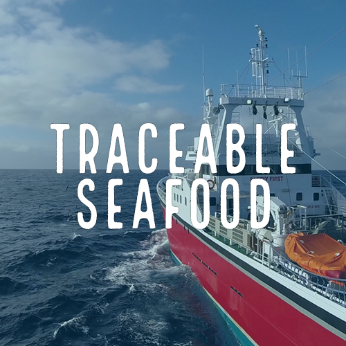 Healthy Oceans Spotlight 2 - Traceable Seafood