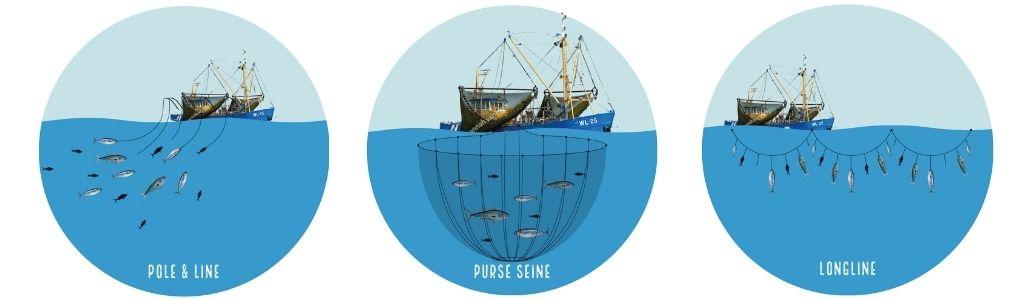 Diverse vangstmethodes tonijn