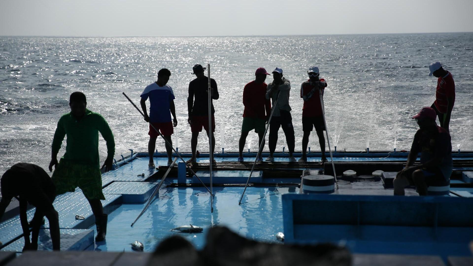 Pole&Line tonijnvisserij op boot (1920x1080)