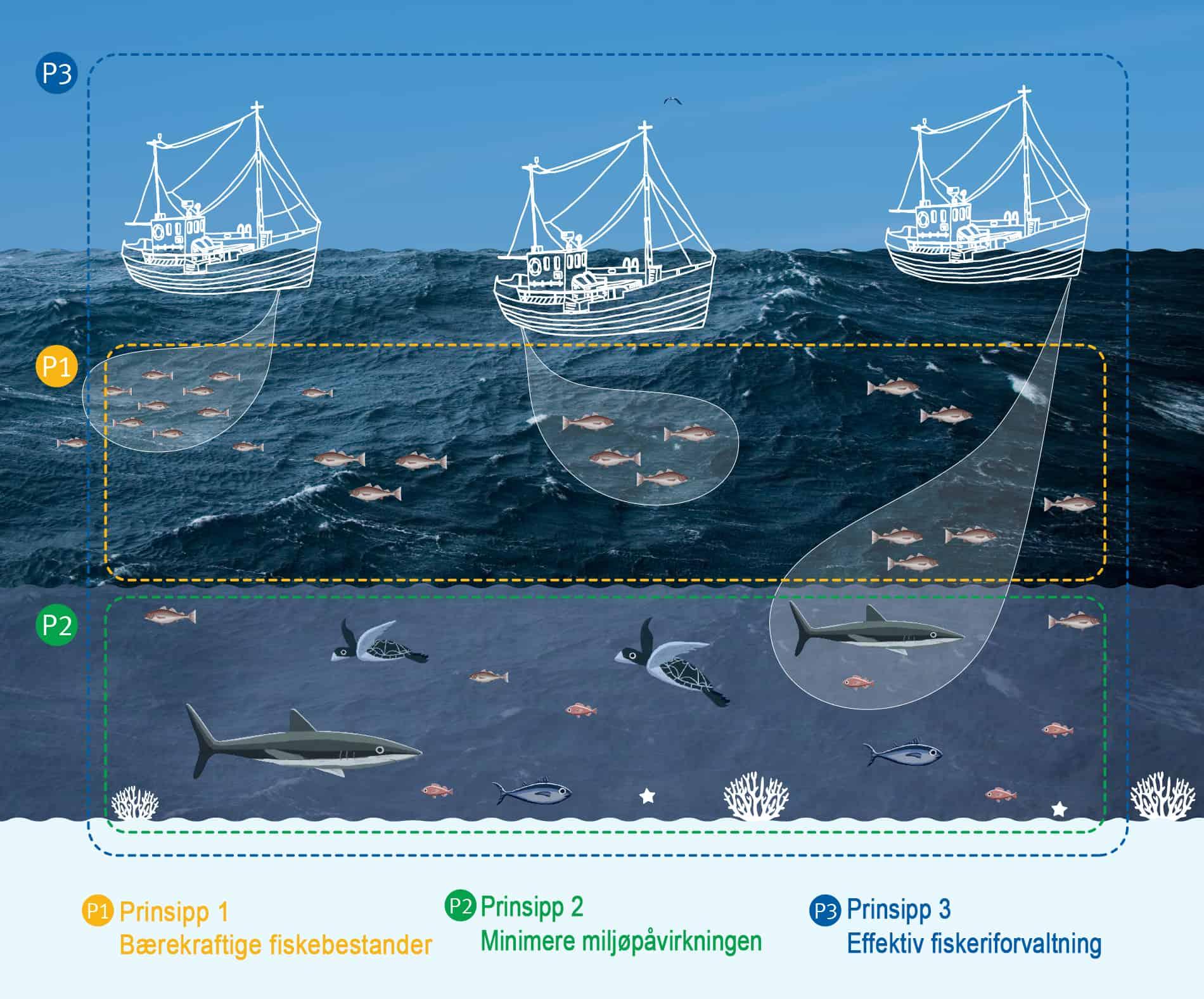 JPG_3 prinsipper bilde norsk