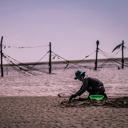 ben-tre-clam-fishery-spotlight