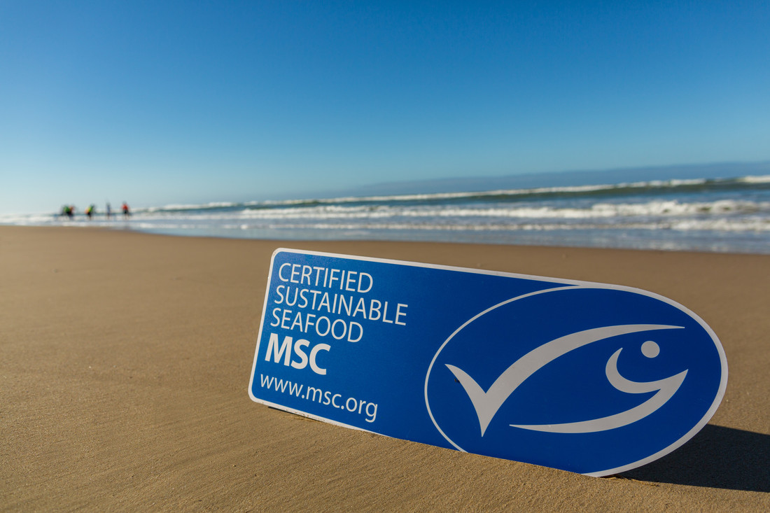 MSC ecolabel on beach