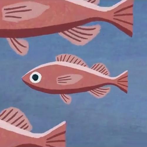 Pink fish illustration