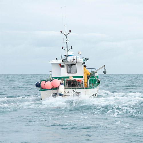 le azienda della pesca sostenibile