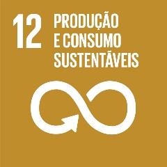 SDG-icon-PT-RGB-12-1