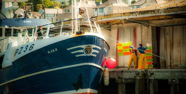 MSC-certified-Cornish-hake-fishing-vessel-Ajax-PZ36