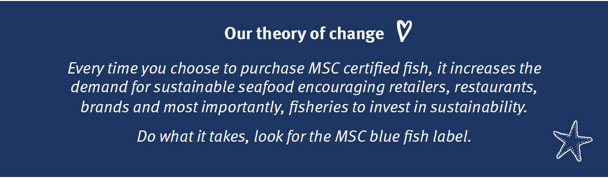 MSC theory of change