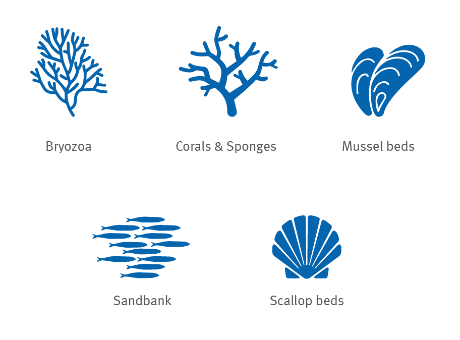 marine-habitats-icons