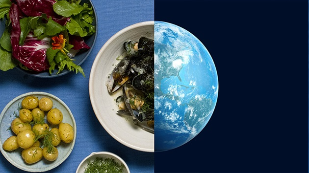 The Blue Cookbook
