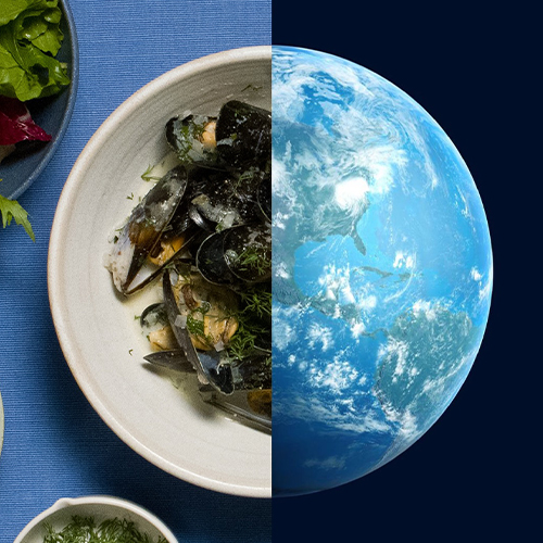 mussels and the world