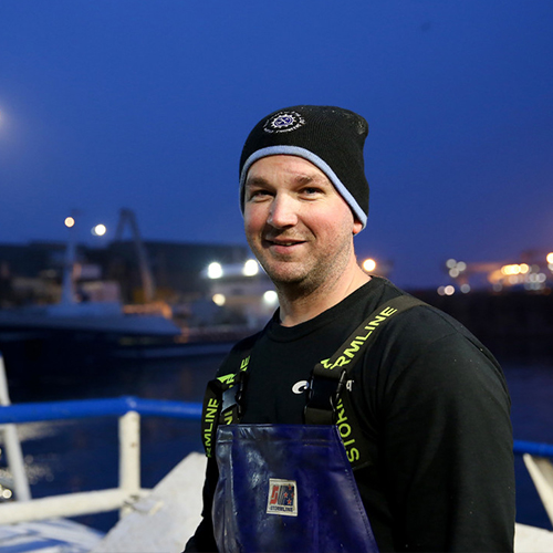 North Sea cod